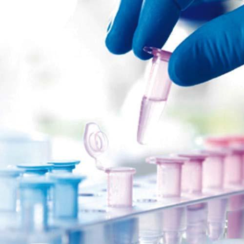 Laboratoire | Petits matériels de laboratoire